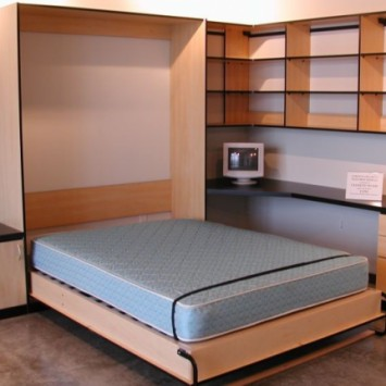 Closets to go loft murphy bed